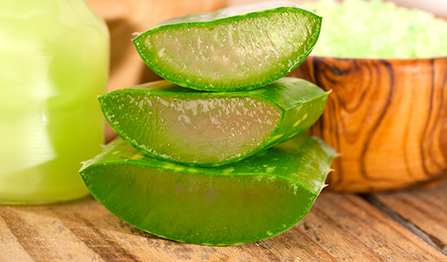 How To Use Aloe Vera for Hair, Aloe Vera for Hair