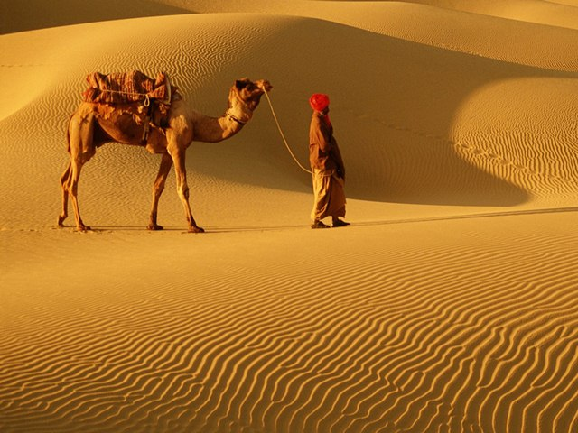 Rajasthan, Domestic Destinations for Winter Holidays