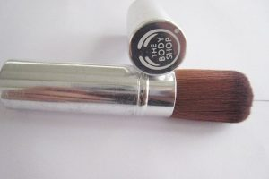The Body Shop Retractable Blusher Brush Review, The Body Shop Retractable Blusher Brush, The Body Shop, Blusher Brush