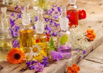 Top Essential Oils' Brands in India, Essential Oils