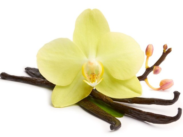 Ways to Use Vanilla for Skin Care, Vanilla for Skin